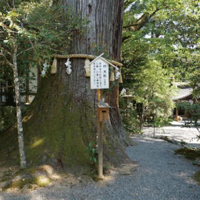 丹生上川神社中社