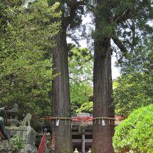 八幡朝見神社